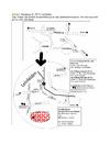 Anfahrtskizze_Leinfelden.pdf